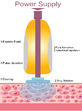 dien-di-e-cool-dermicar-2